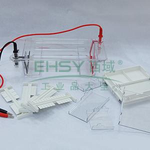 DYCP-31DN型琼脂糖水平电泳仪(小号),六一