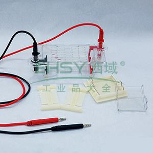 DYCP-31BN型琼脂糖水平电泳仪,六一