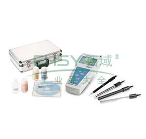 DZB-718B型便携式多参数分析仪(pH/pX、溶解氧、℃),雷磁