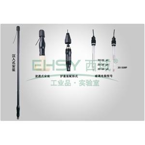 pH复合电极,HT2513S