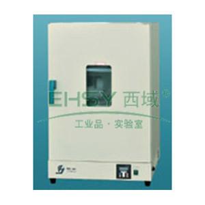 电热恒温鼓风干燥箱,DHG9147A