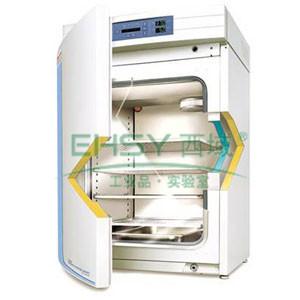 CO2细胞培养箱,热电 水套式,3111,控温范围:RT+5~55℃,内部尺寸:541×508×681mm