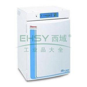 CO2细胞培养箱,热电,直热式,311,控温范围:RT+5~50℃,内部尺寸:541×508×681mm