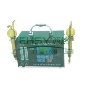 双气路大气采样器,流量:0.1至3L/min ZGQ-2