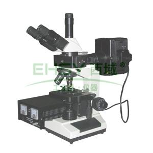三目正置荧光显微镜