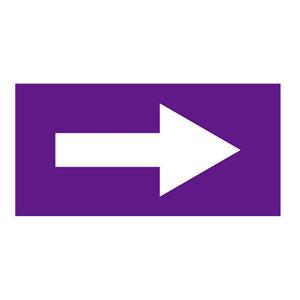 安赛瑞 流向箭头,自粘性乙烯表面覆膜,紫底白箭头,50×100mm,15422,5张/包