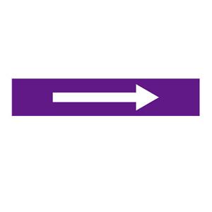 安赛瑞 流向箭头,自粘性乙烯表面覆膜,紫底白箭头,50×250mm,15446,5张/包