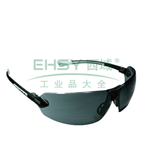 MSA 9913283 舒特-GAF防护眼镜(防紫外线)
