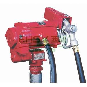 FILL-RITE FR700VG 交流电动柴油输送泵