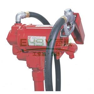 FILL-RITE FR300V 交流电动燃油输送泵