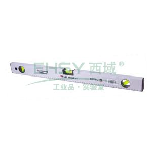 水平尺,300mm,DL700300B