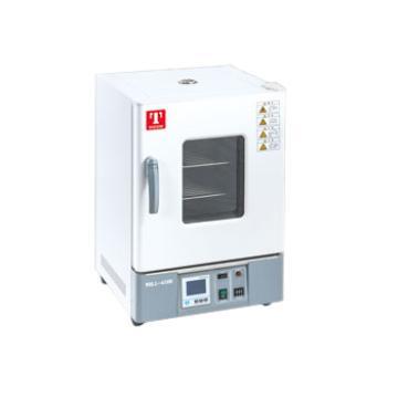 恒温干燥箱,立式,WHL-30B