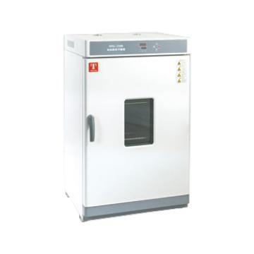 热空气消毒箱,两窗口数码显示,GX230B