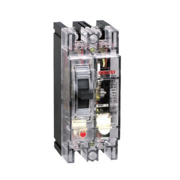 德力西 漏电断路器,DZ15-40T 2901 40A,DZ1540T402