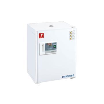 电热恒温培养箱,标准型,DH3600BII