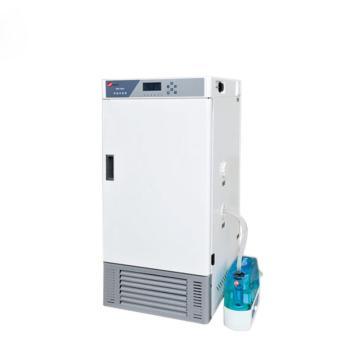 恒温恒湿箱,标准型,HWS-70B