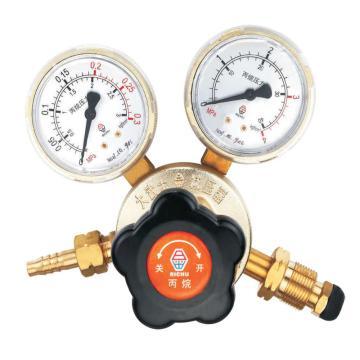 日出大武士减压器,881-P20(LR81),适用气体:丙烷,输入压力:1.6Mpa