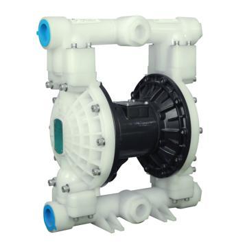 """江浪/RV RVTGB2988 1_1/2""""非金属壳体气动隔膜泵"""