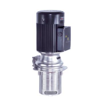 华乐士/WALRUS TPHK4T2-2 TPHK系列铸铁浸入式多级离心泵