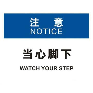 安赛瑞 OSHA注意标识-当心脚下,ABS板,250×315mm,31684