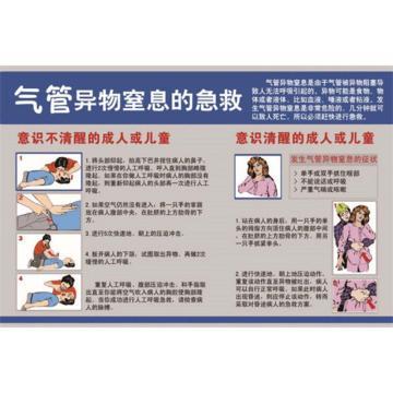 气管异物窒息的急救,ABS工程塑料,75cm×50cm