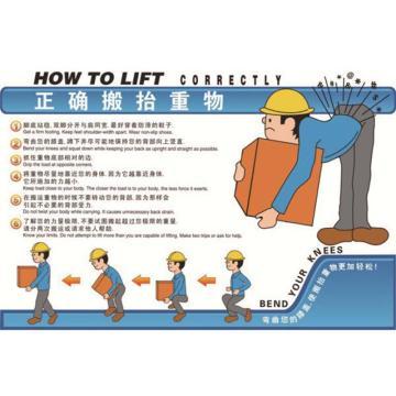 正确搬抬重物,ABS工程塑料,75cm×50cm