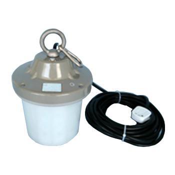 大地之光 DDZG-AN111-45-12,12V45W安全行灯 LED, 45W