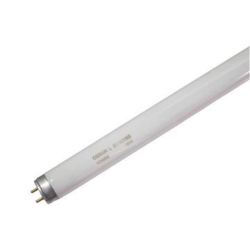 欧司朗 T8 18W/765  标准型直管荧光灯, 0.6米  白光,整箱,25只每箱