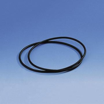 BRAND干燥器密封圈,CR材质,用于标称规格 250mm的干燥器