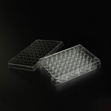 细胞培养板,48孔,0.7cm2,CellATTACH超亲水表面处理,已消毒,1块/盒,100块/箱