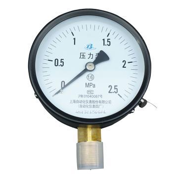 上仪 压力表Y-100,碳钢+铜,径向不带边,Φ100,0~0.6MPa,M20*1.5