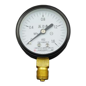 上仪 压力表Y-60,碳钢+铜,径向不带边,Φ60,0~4.0MPa,M14*1.5