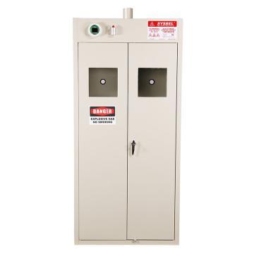 SYSBEL 两瓶型气瓶存储柜(外界排风)双门/手动,含声光报警含电源适配器220V转24V WA720102