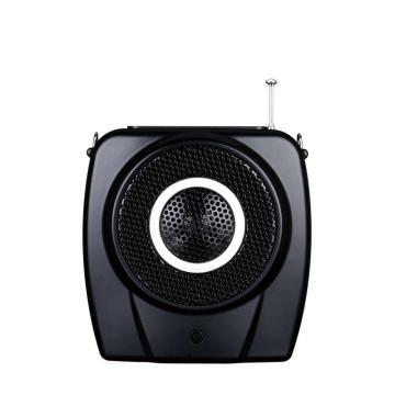 得胜(Takstar) 便携扩音器,有线喊话器FM收音机插卡MP3录音 E9M 单位:套