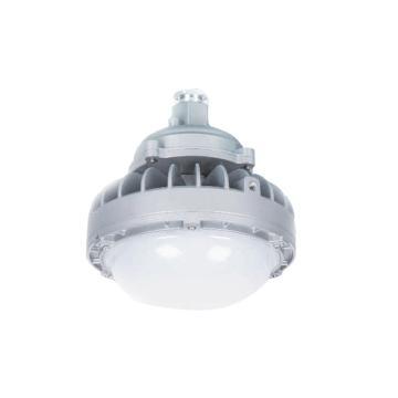 华荣WAROM 防爆灯,RLEEXL601-XL36护栏式,36W 白光5000K(不含护栏管)