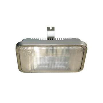 深圳海洋王 NFC9175E 低顶灯