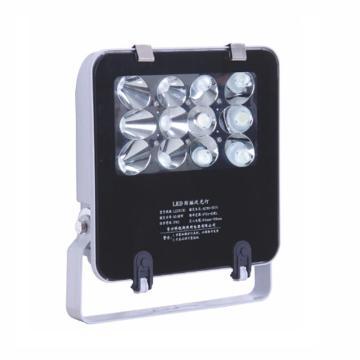 科锐斯 LZY8101 防眩泛光灯 LED 25W白光5700K,支架式