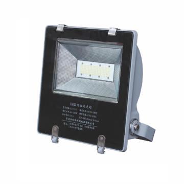 科锐斯 LZY6102 泛光灯 LED 15-25W(应急)白光5700K,支架式