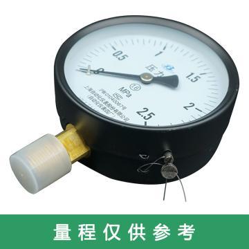 上仪 压力表Y-150,碳钢+铜,径向不带边,Φ150,0~2.5MPa,M20*1.5