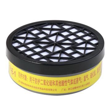 南核 2007 P-E-1 滤毒盒7#,防护二氧化硫和其他酸性气体或蒸气,适用于2028,2628