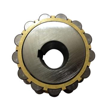 LYC/洛轴 偏心轴承,双列圆柱滚子,500752307K