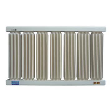 捷阳 电取暖器,HXD-1500,额定功率:1500W,911*550*43;标准型,7柱,配20A温控(原16A)