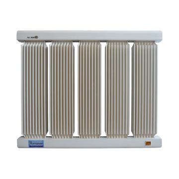捷阳 电取暖器,HXD-1000,额定功率:1000W,657*550*43;标准型,5柱,配20A温控(原16A)