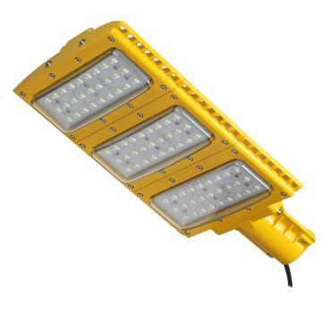 颇尔特 防爆LED节能路灯,功率100W 白光,POETAA602,单位:个
