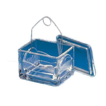 BRAND染色槽,含托盘,可放置10张规格为91*70*48mm的载玻片,10个/包