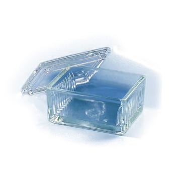BRAND染色槽,Schiefferdecker式,可以放置10张载玻片,10个/包