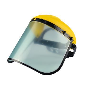 代尔塔DELTAPLUS 防护面屏套装,101304, BALBI2 PC防化面屏+支架,1套