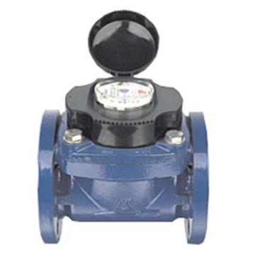 埃美柯/AMICO 铁壳可拆卸螺翼干式冷水表,LXLG-200E,法兰连接,销售代号:069-DN200