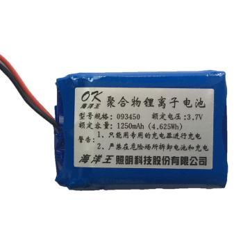 深圳海洋王 IW5130A电池 单位:个