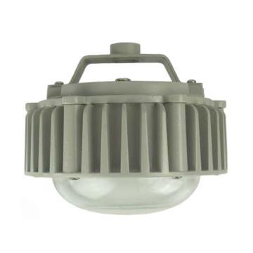 深圳创元 LED节能三防灯 CYGS980A功率50W 白光 不含安装配件,单位:个